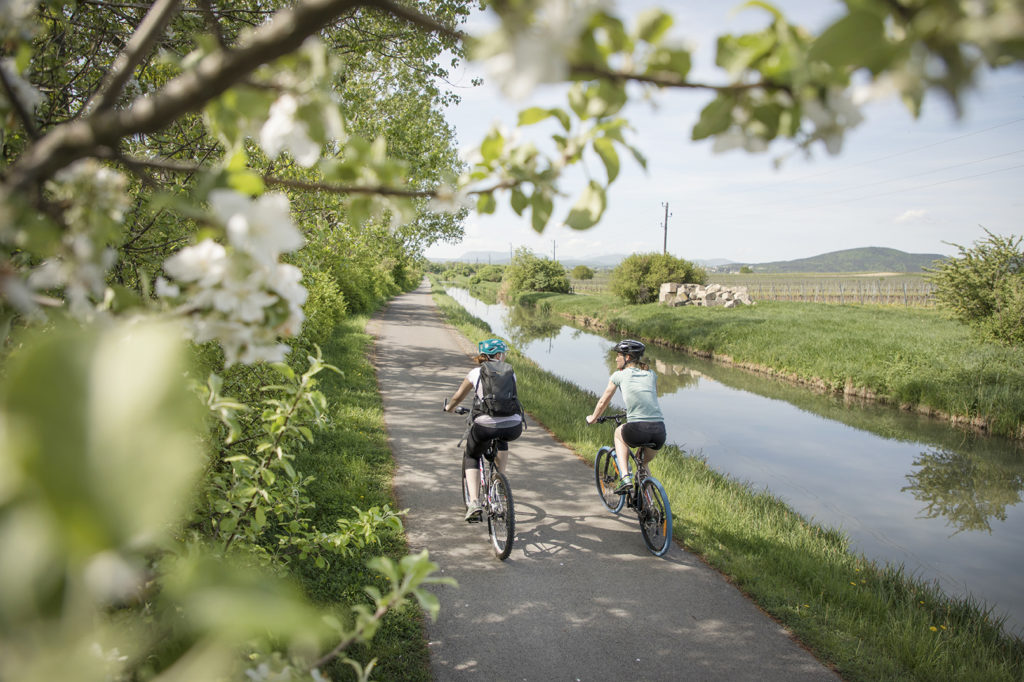 Cyklistika bez hranic na trasách EuroVelo