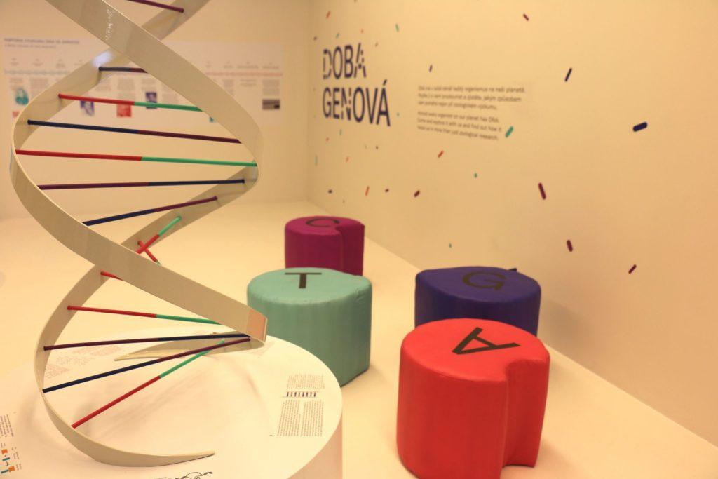 V Národním muzeu začíná Doba genová