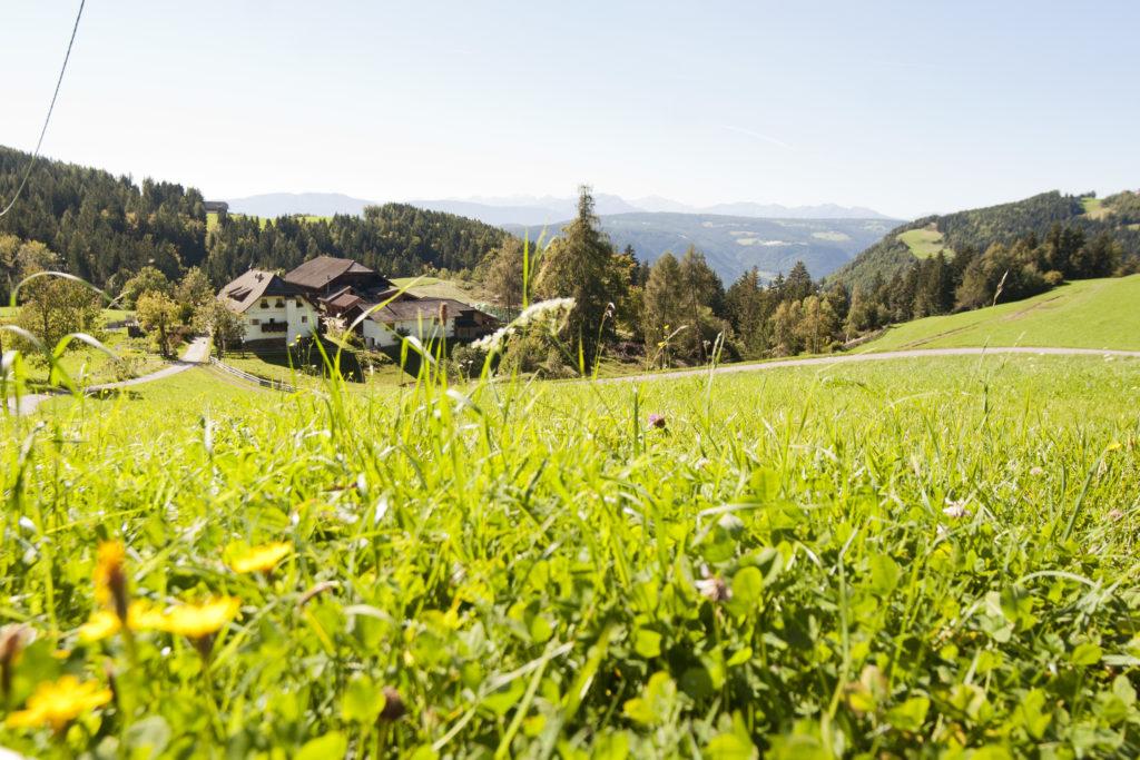 6 historických statků v Jižním Tyrolsku, které stojí za to navštívit!