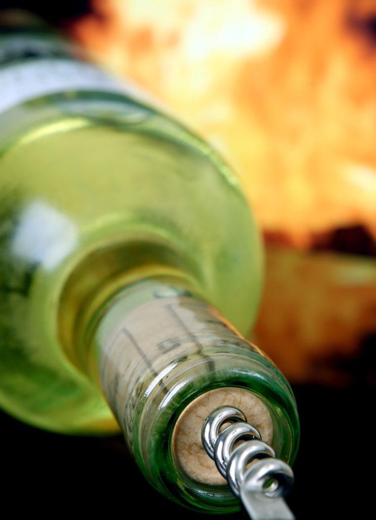 Desatero pro fanoušky Svatomartinských vín