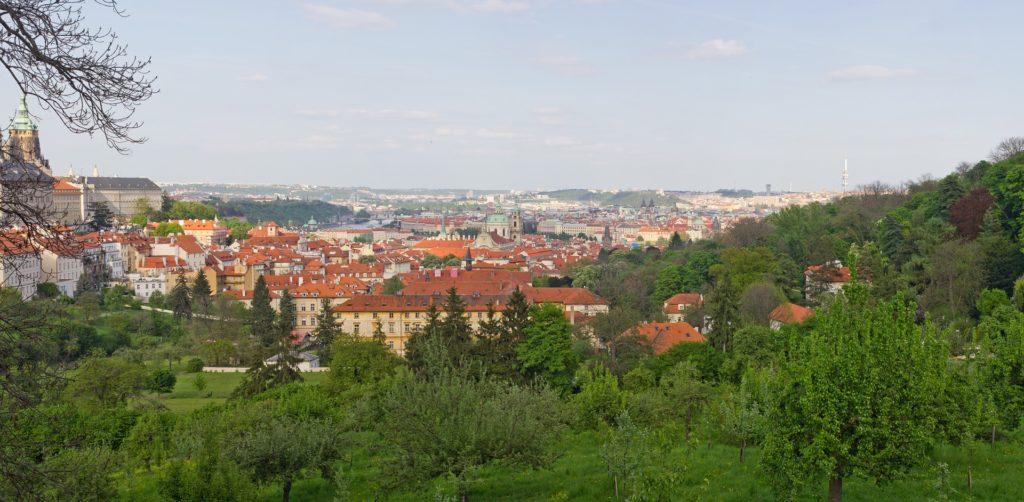 Praha je v pozorování přírody nejúspěšnější v Evropě