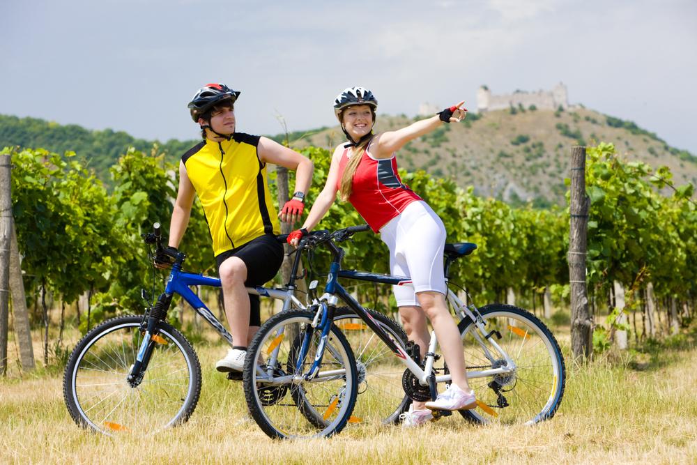 Vinařské stezky a cyklostezky Jižní Moravy