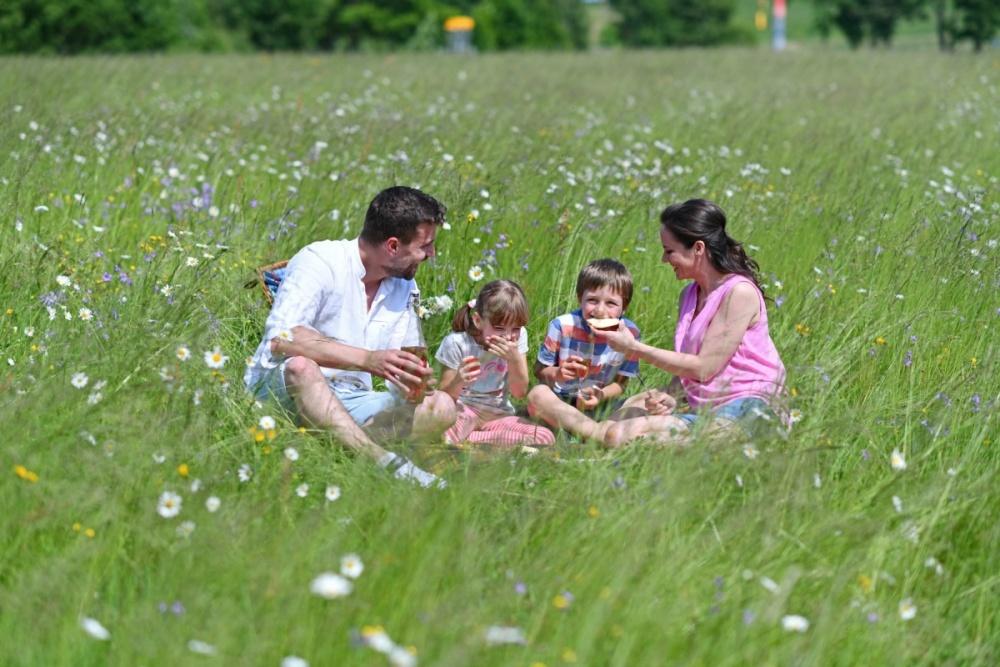 Ochutnejte horskou pohodu na Dolní Moravě díky pohádkovému pikniku