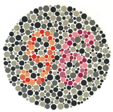 Jak vidí svět barvoslepí?