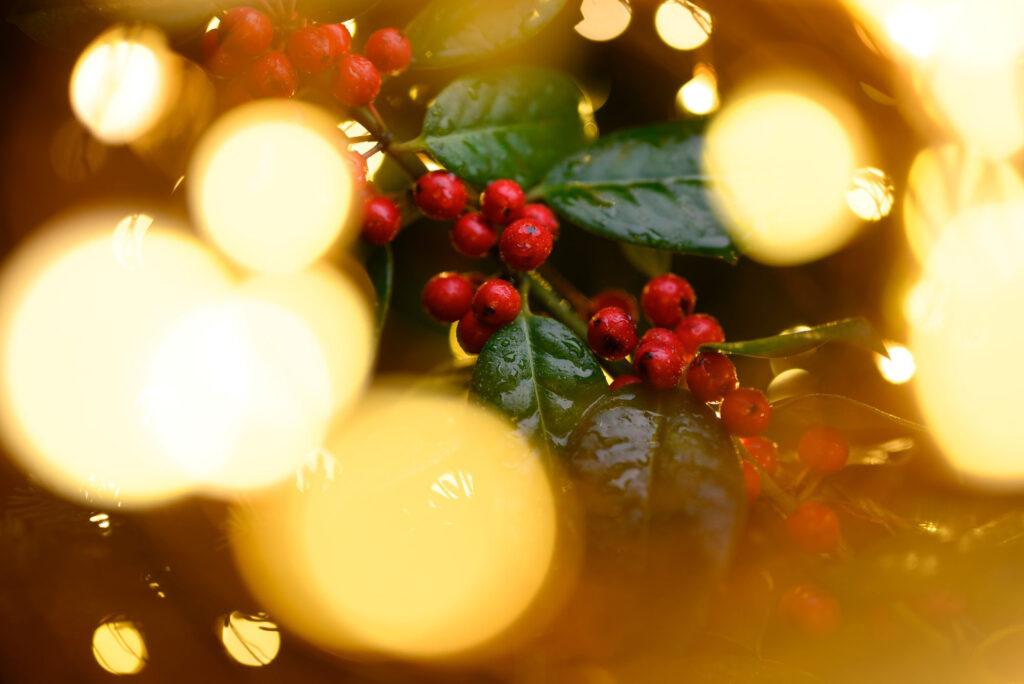 8 triků, jak vykouzlíte krásnou vánoční fotografii