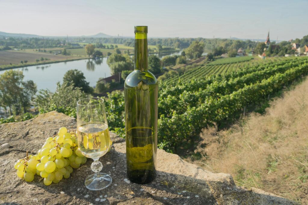 Putování za vínem po Čechách